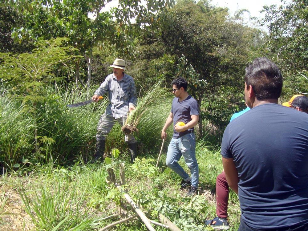 Piet Sabbe organiza jornadas de consultoría en su finca Parque Bambú
